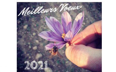 2021 une année meilleure !